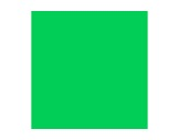Filtre gélatine LEE FILTERS Moss green 089 - feuille 0,53m x 1,22m