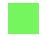 Filtre gélatine LEE FILTERS Fern green ht 122 - feuille 0,50m x 1,17m-filtres-lee-filters
