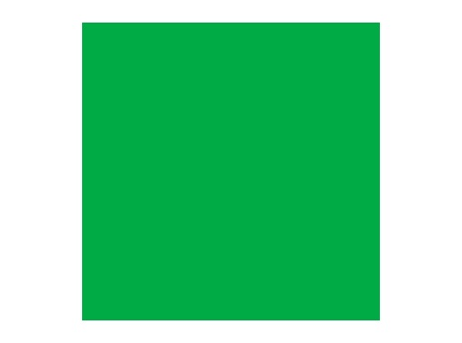 LEE FILTERS • Dark green - Feuille 0,53m x 1,22m