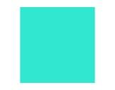 LEE FILTERS • Fluorescent green - Feuille 0,53m x 1,22m