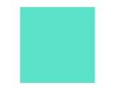 Filtre gélatine LEE FILTERS Lee fluorescent 4300 K - rouleau 7,62m x 1,22m