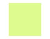 Filtre gélatine LEE FILTERS Lee plus green 244 - feuille 0,53m x 1,22m