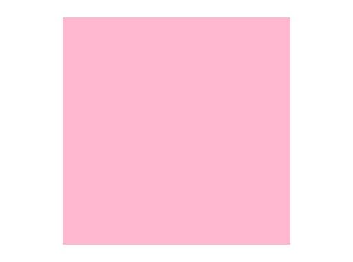 LEE FILTERS • Lee minus green - Feuille 0,53m x 1,22