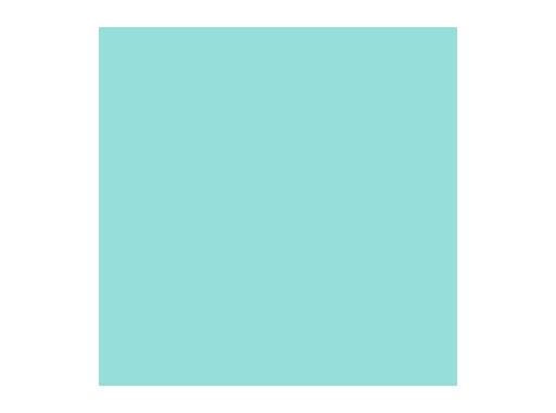 LEE FILTERS • Steel Green - Feuille 0,53 x 1,22m