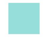 Filtre gélatine LEE FILTERS Steel Green 728 - feuille 0,53 x 1,22m