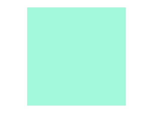 LEE FILTERS • Liberty green - Feuille 0,53 x 1,22m