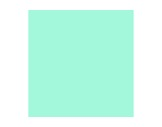 Filtre gélatine LEE FILTERS Liberty green 730 - feuille 0,53 x 1,22m