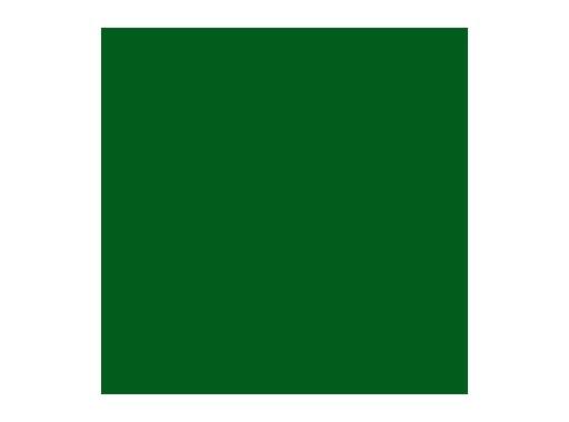 LEE FILTERS • Velvet green - Feuille 0,53 x 1,22m