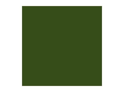 LEE FILTERS • Aurora Borealis Green - Rouleau 7,62m x 1,22m