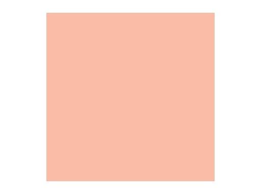 ROSCO SUPERGEL • Pale Apricot Feuille 0,50m x 0,61m
