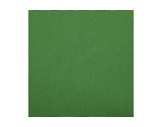 TOILE INCRUSTE • Verte M1 - largeur 600 cm 200 g/m2-textile