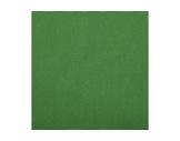 TOILE INCRUSTE • Verte M1 - largeur 620 cm 200 g/m2-textile
