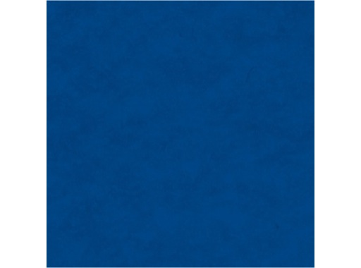 MOQUETTE • Bleu Roi filmée 200 cm pièce 40 ml 80 m2