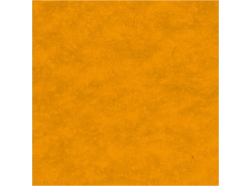 MOQUETTE • Mandarine filmée en 200 cm pièce 40 ml 80 m2