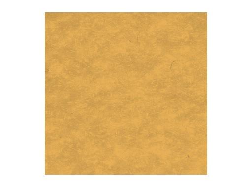 MOQUETTE • Caramel filmée 200 cm pièce 40 ml 80 m2