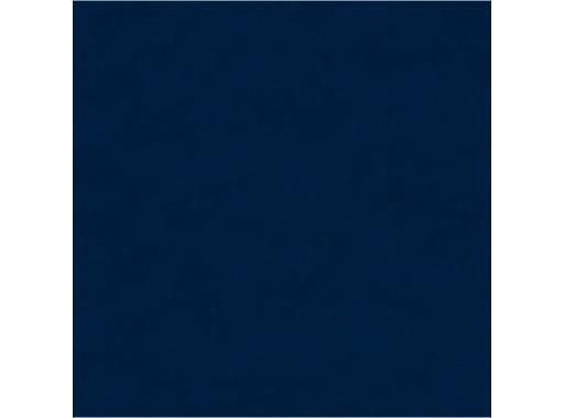 MOQUETTE • Bleu Marine filmée en 200 cm pièce 40 ml 80 m2