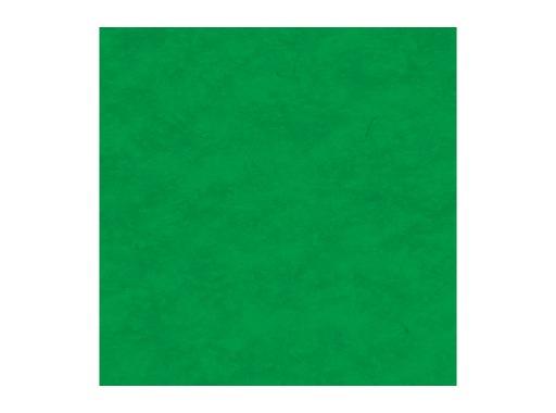 MOQUETTE • Vert Vif filmée en 200 cm pièce 40 ml 80 m2