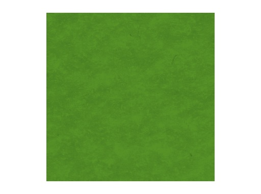 MOQUETTE • Vert Printemps filmée 200 cm pièce 40 ml 80 m2