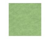 MOQUETTE • Vert Pistache filmée 200 cm pièce 40 ml 80 m2-textile