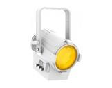 PROLIGHTS • Fresnel LED ECLFRESNEL JR TW blanc var & couleurs 130W blanc-pc--fresnel