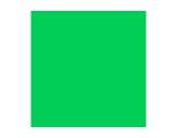 Filtre gélatine ROSCO MOSS GREEN - rouleau 7,62m x 1,22m-filtres-rosco-e-color