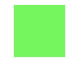 Filtre gélatine ROSCO FERN GREEN - feuille 0,53 x 1,22-consommables