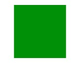Filtre gélatine ROSCO PRIMARY GREEN - feuille 0,53 x 1,22