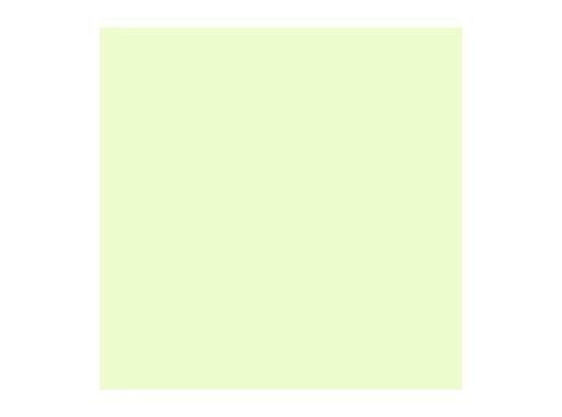 Filtre gélatine ROSCO COSMETIC SILVERMOSS - feuille 0,53 x 1,22