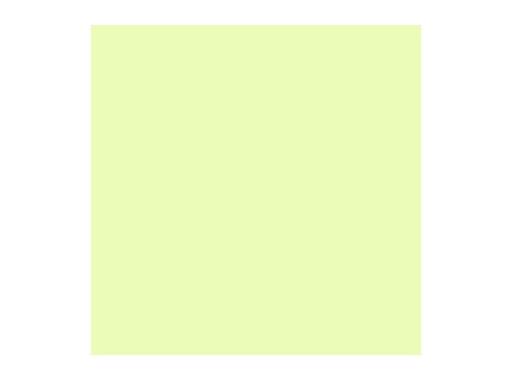 Filtre gélatine ROSCO HALF PLUS GREEN - feuille 0,53 x 1,22