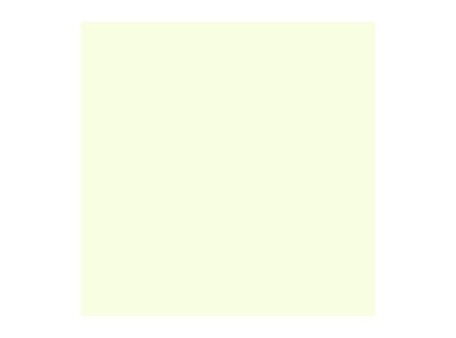 ROSCO • EIGHTH PLUS GREEN feuille 0,53 x 1,22