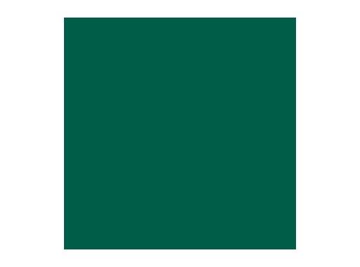 Filtre gélatine ROSCO MALLARD GREEN - feuille 0,53 x 1,22