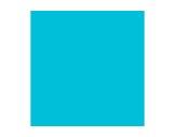 Filtre gélatine ROSCO SPECIAL STEEL BLUE - feuille 0,53 x 1,22